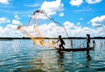 Tour du lịch Cà Mau: Chinh phục cực Nam của Tổ Quốc
